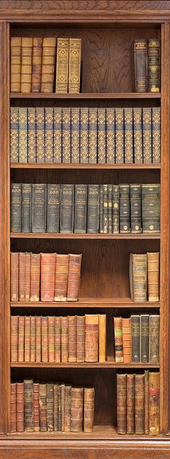 А1-001 Книжный шкаф 100*270  фотопанно